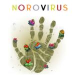 Норовирус — симптомы и лечение