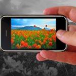 Почему на смартфоне отказываются работать основная или фронтальная камеры